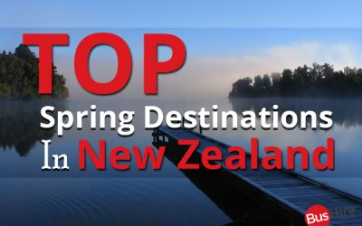 Top Spring Destinations in New Zealand