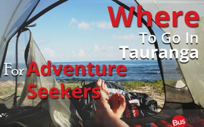 Where To Go In Tauranga For Adventure Seekers
