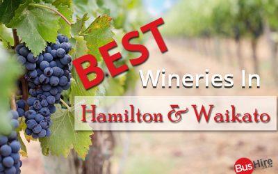 Best Wineries in Hamilton & Waikato