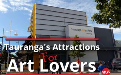 Tauranga's Attractions For Art Lovers