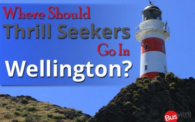 Where Should Thrill Seekers Go In Wellington?