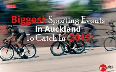 Biggest Sporting Events In Auckland To Catch In 2019